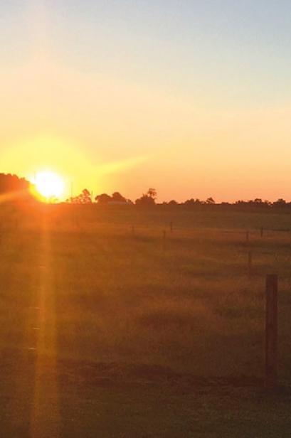 farm in South Carolina